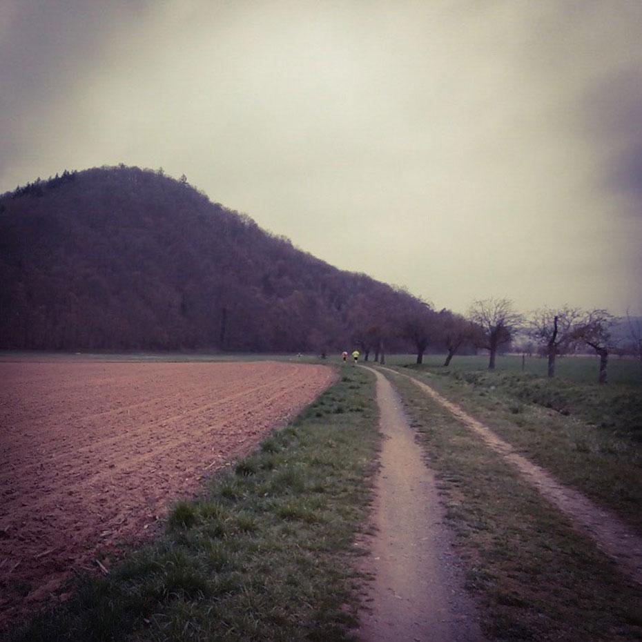 """47. Eschweger Lauf """"Rund um die Leuchtberge"""""""
